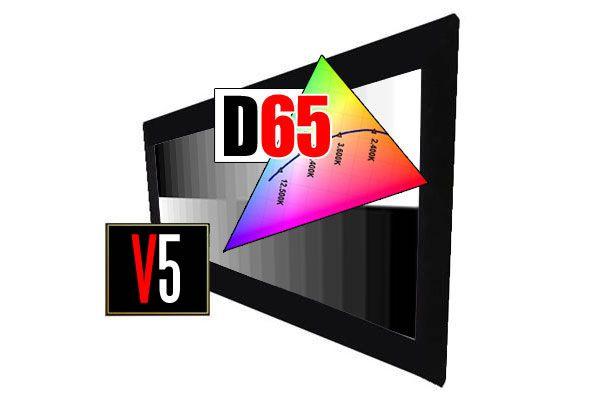 DreamScreen V5 UltraFrame D65 16:9 332cm/150″